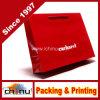 Bolsa de papel impresa aduana del regalo (3238)