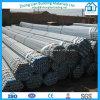 Горячие окунутые гальванизированные трубы HDG стальных труб (ZL-HDGP)