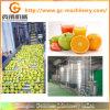 Linha de processamento do suco de fruta para Apple/Orange//Mango