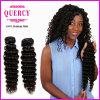 Quercyの毛のブラジルの深い波の巻き毛のRemyの人間の毛髪のよこ糸(W-059)
