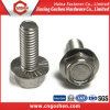 A2 A4 ISO4162/En1665 Edelstahl gezackter Flansch-Hex Kopf-Schraubbolzen
