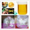 99% Reinheit Prohormone Steroide 303-42-4 Methenolone Enanthate für Muskel-Gebäude