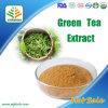 緑茶のエキス