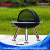 Pozzi esterni del fuoco dell'acciaio inossidabile del BBQ di Roud con il coperchio del metallo