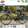 250W 26inch Mountain Electric Pedal Bicyclette Affichage LED Electric Bike En15194 Lithium Batterie Ebike V Frein