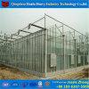 農業のためのHydroponicシステムが付いている工場価格のガラス温室