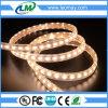 Streifen 220V der hohe Helligkeit Hochspannung-100m/Roll 5730 LED