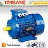 IEC Y2 trifásico de hierro fundido de la caja del motor eléctrico de Asynchrous