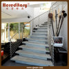 Os trilhos de Rod do aço inoxidável na escada parte (SJ-S 313)