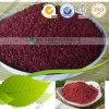 Surtidor rojo natural del polvo del arroz de la levadura