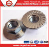 Incoloy Inconel 육각형 플랜지 견과 DIN555