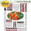 Baga Himalayan orgânica de Wolfberry Goji da nêspera