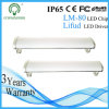 CA Epistar 30W Tri-Proof LED Lighting di Voltage 220-240V dell'input