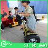Da roda elétrica do Chariot dois de China 36V trotinette elétrico de pé