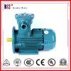AC de Asynchrone Elektrische Motor van het ex-Bewijs met 380V 0.37kw