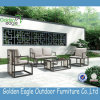 Il giardino esterno della mobilia imposta il vimine sintetico S0235