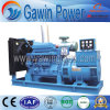 40kw-600kw diesel die Reeksen met Motor Shangchai produceren