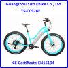 36V 250W 전기 자전거 뚱뚱한 숙녀 또는 운명 뚱뚱한 자전거 또는 바닷가 함 자전거