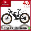2017 bicicleta elétrica do pneu gordo do modelo novo MTB com 500W o motor Ebike para a venda
