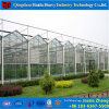 拡散ライトおよび大いによりよく成長する条件ガラスの温室を作成しなさい