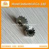 Surtidor de oro A4-80 1/4 del acero inoxidable  ~5/8  tuerca de fijación de K