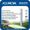 Bombas solares da C.C. |Ímã permanente|Motor sem escova da C.C. |O motor é enchido com água|Poço solar Pumps-4sp8/5 ()
