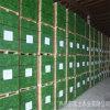 Planches d'échafaudage de LVL de pin d'OSHA/LVL imperméable à l'eau Bpards de pin