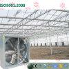 China-Windows eingehangener Abgas-Kühlventilator für Gemüsegewächshäuser