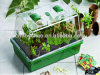 Propagator plástico, Propagator do jardim, Propagator da planta