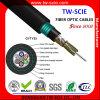 Cable de fibra óptica acorazado trenzado base del tubo flojo de la fábrica 24/48/72/96/144/216/288 (GYTY53)