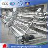 Numéro 1 cages de ferme avicole de qualité Using la cage de poulet de ponte d'oeufs