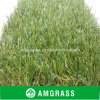 훈장 Flooring Synthetic Turf와 정원 Artificial Grass