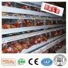 Het Systeem van de Apparatuur van de Kooi van de Kip van de Laag van het Landbouwbedrijf van het Gevogelte van Poul Tech (Hete Galvanisatie)