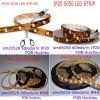 LED 지구 60LEDs/M IP20 & IP44 (DL 3528W60A 12V/l)