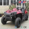 vehículo utilitario de 150cc UTV 4X4