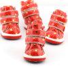 Les chaussures de chien de chiot chauffant l'animal familier chausse des chaussures de chien