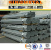 ASTM A53 GR. Tubo de aço galvanizado a quente da tubulação sem emenda de B