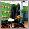 Parete artificiale dell'erba della pianta verde della decorazione dell'interno