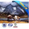 Prachtige Wholesales 3D Picture van Horse