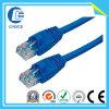 Cable de la red (CH40132)