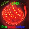 diodo emissor de luz Strip Car Waterproof de 3528 240LEDs/M Flexible 3528 SMD