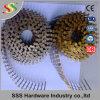 16 도 Screw Shank Bright Pointless Coil Nail 2.5X50/2  X. 099