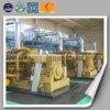 Centrale à gaz de gazéification de biomasse de générateur de pailles de cosse de riz