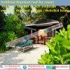 De vuurvaste Palm van Sinthetic /Plastic met stro bedekt Caraïbische Natuurlijk kijkt