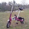 Bici plegable Es-05 de la vespa eléctrica