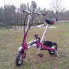 Bici piegante Es-05 del motorino elettrico