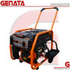 第64 Good PriceのHome Use Power Gasoline Generator