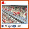 Gaiola da galinha da camada, gaiolas da camada da gaiola da galinha, gaiolas de pássaros, engranzamento da exploração avícola