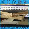 A película do uso da laje de cimento (de MarinePlx) enfrentou a madeira compensada