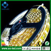 36W SMD 5050 Warm White Flexible LED Strip Light IP68